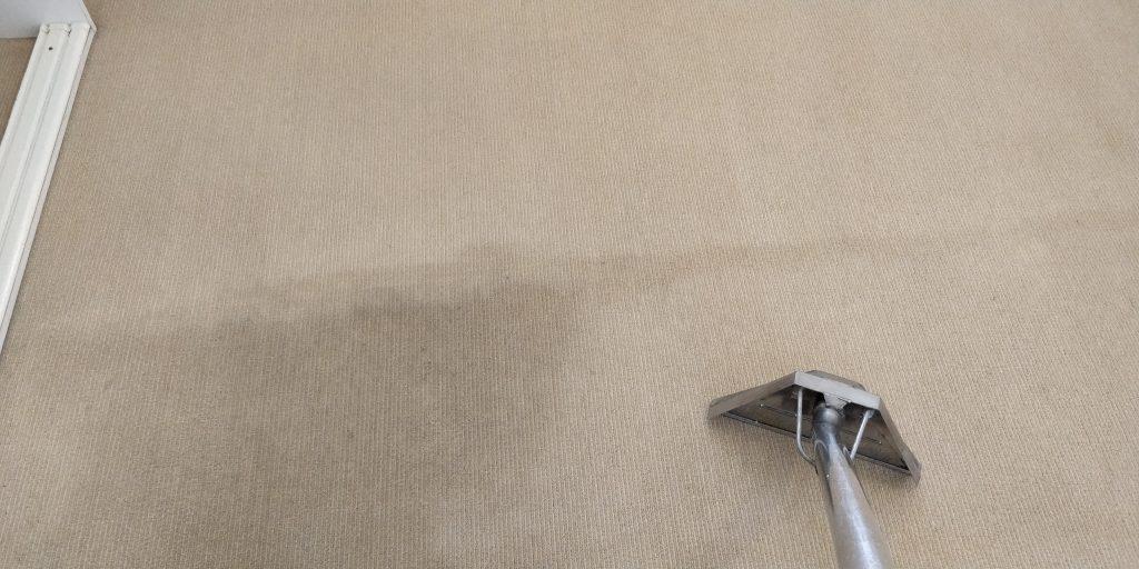 Carpet Cleaning Bracken Ridge